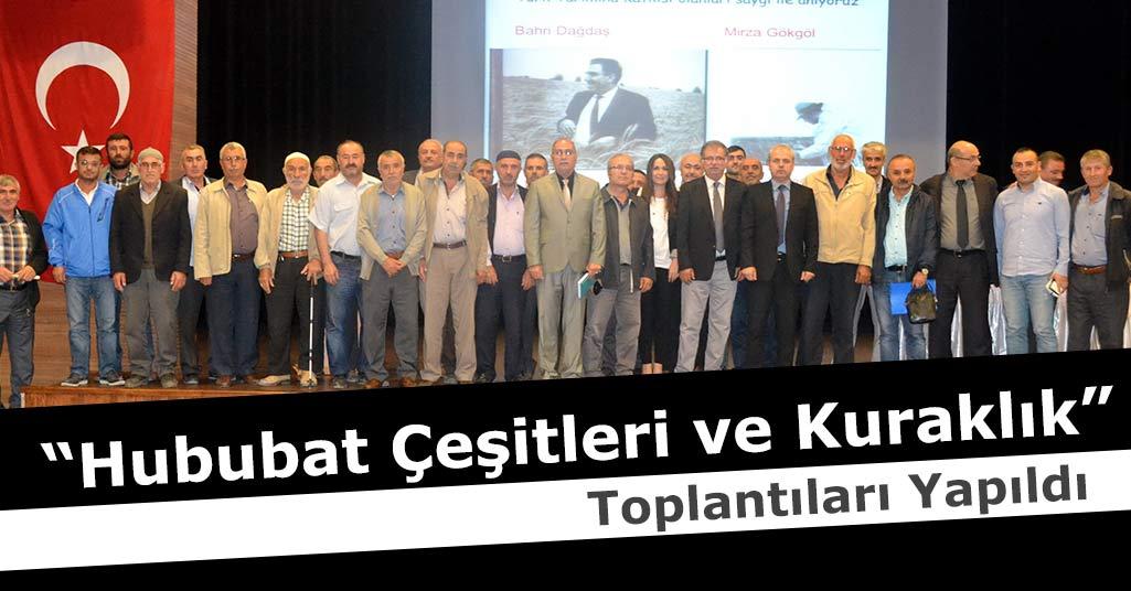 """Samsun'da """"Hububat Çeşitleri ve Kuraklık"""" Toplantıları Yapıldı"""