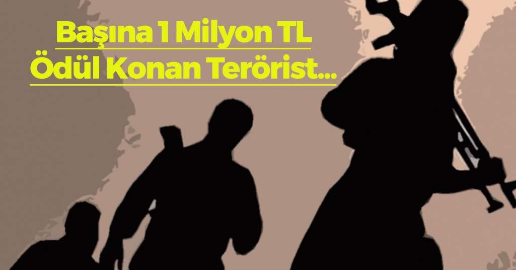 Başına 1 Milyon TL Ödül Konan Terörist...
