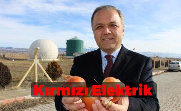 Soğandan Elektrik Üretimi
