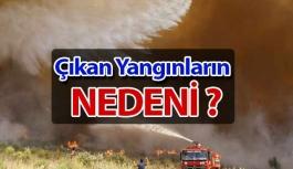 Yangınların Sebebi ?