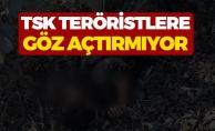 Valilik Açıkladı İki Terörist Öldürüldü