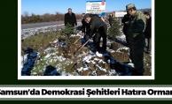Samsun'a Demokrasi Şehitleri Ormanı