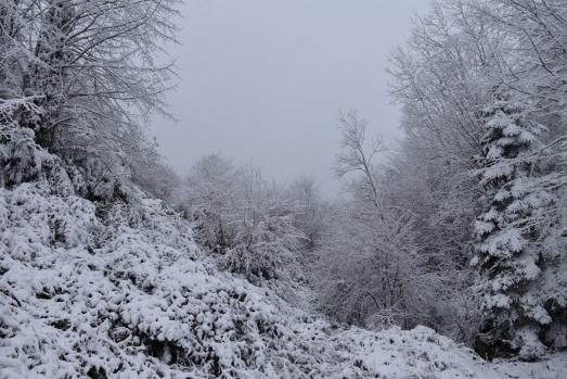 Samsun kar görüntüleri