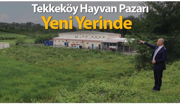 Tekkeköy Hayvan Pazarı, İlçe Merkezi Dışını Alınıyor