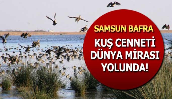 Kuş Cenneti Dünya Miras Listesine Aday