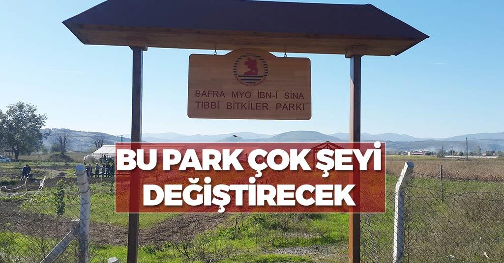 Samsun'da Tıbbi Bitki Yetiştirecekler