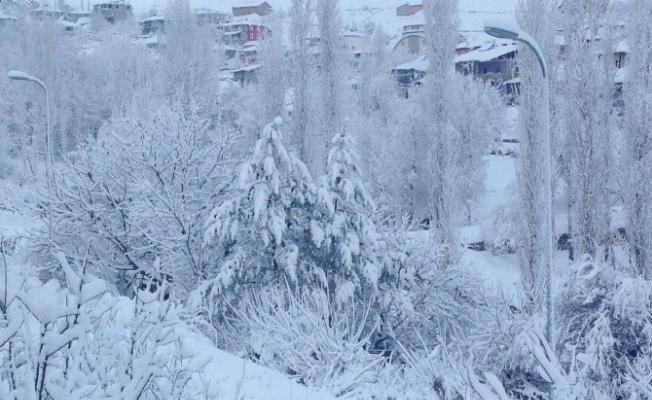 Adana'nın kuzey ilçesi kar esaretinde