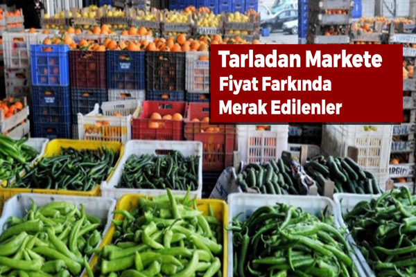 Tarladan Markete Yükselen Fiyatlara Tedbir mi Geliyor?