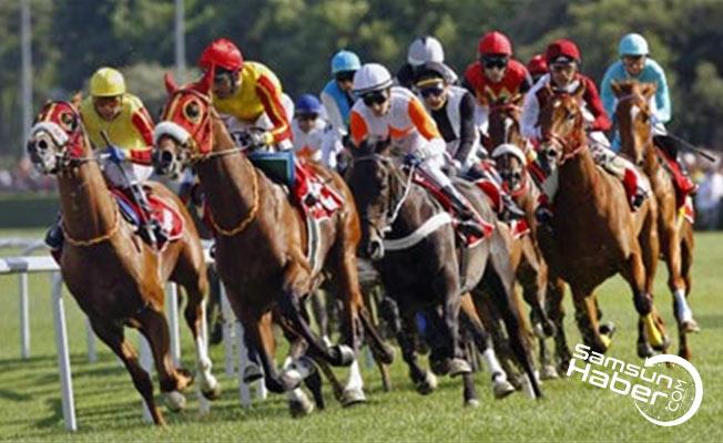 Gazi koşusunda yer alan atlar belli oldu