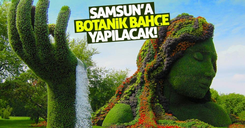 Samsun'a oyuncak müzesi ve botanik park yapılacak