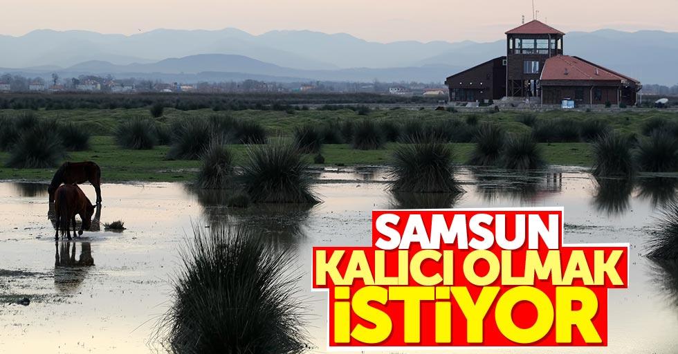 Samsun UNESCO'da kalıcı olmak istiyor