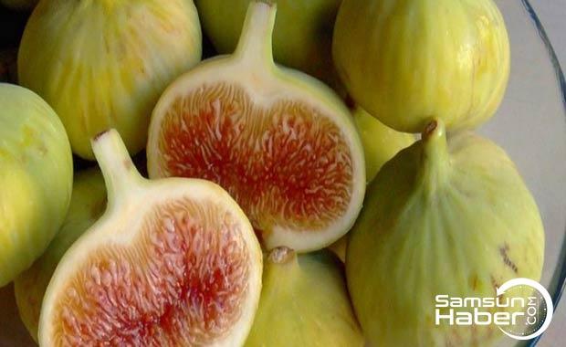 Beyaz incirin bilinmeyen yönleri