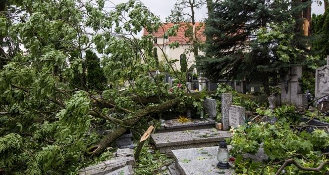 Fırtına Polonya'yı vurdu: 4 ölü, 28 yaralı