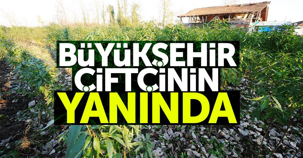 Samsun'da 15 çiftçiye destek