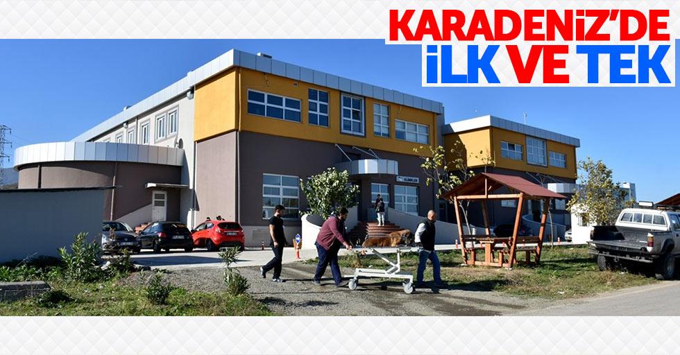 Samsun'da hayvan hastanesi acil servisi açıldı