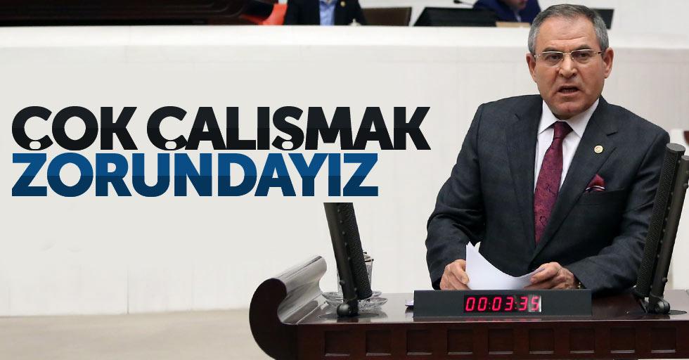 CHP'li Zeybek: Çok çalışmak zorundayız