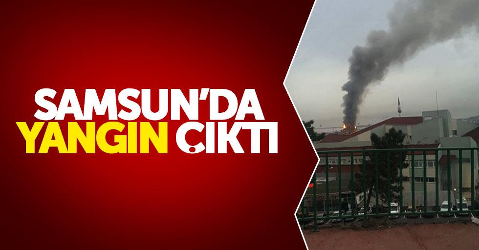 Samsun'da yangın çıktı