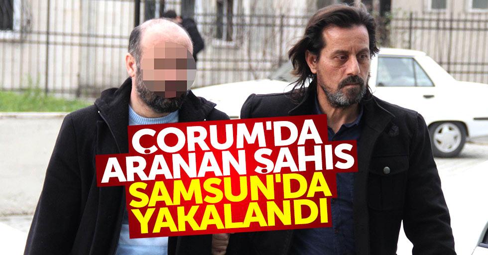 Çorum'da aranan şahıs Samsun'da yakalandı