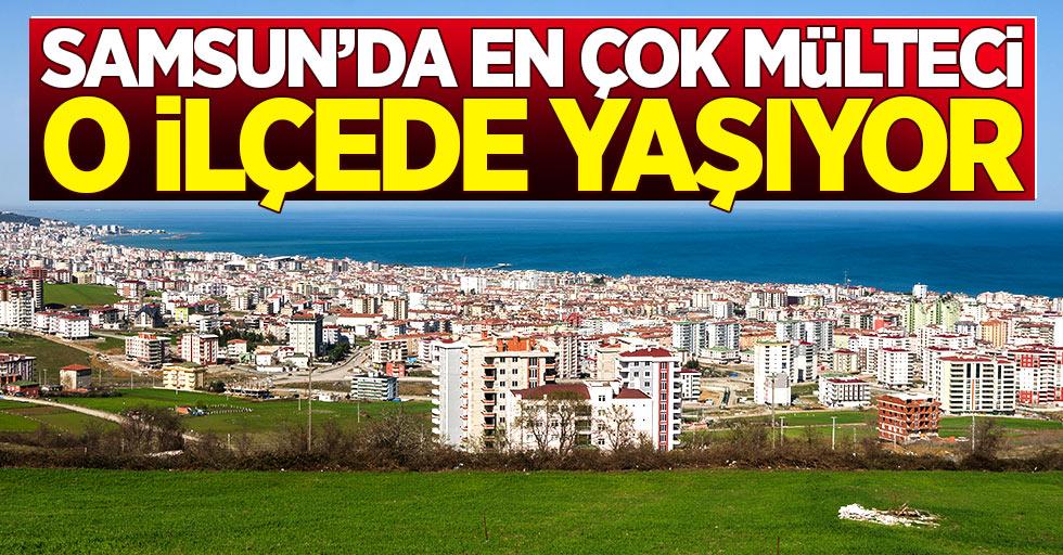 Samsun'da en çok mülteci o ilçede yaşıyor