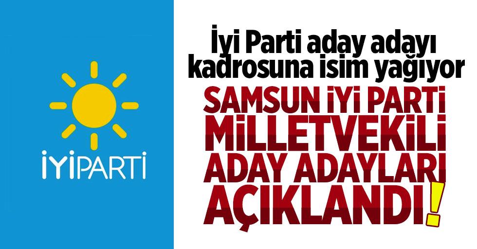 Samsun İyi Parti aday adayları açıklandı