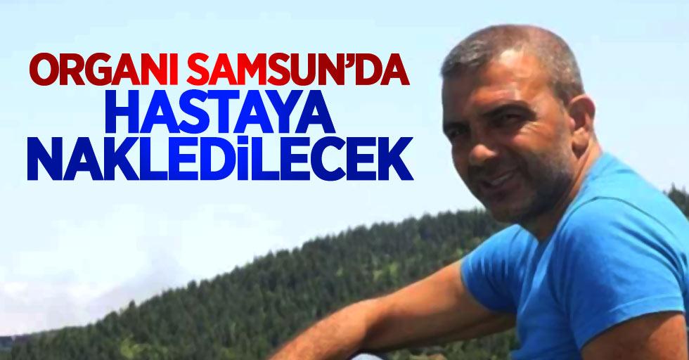 Trabzonlu Kutoğlu'nun organı Samsun'da hayat bulacak