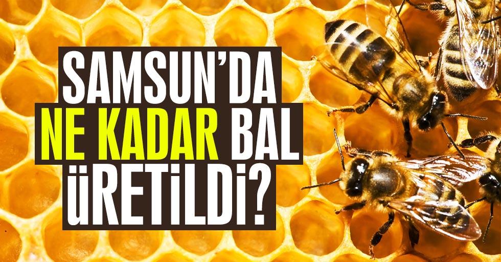 Samsun'da ne kadar bal üretildi?