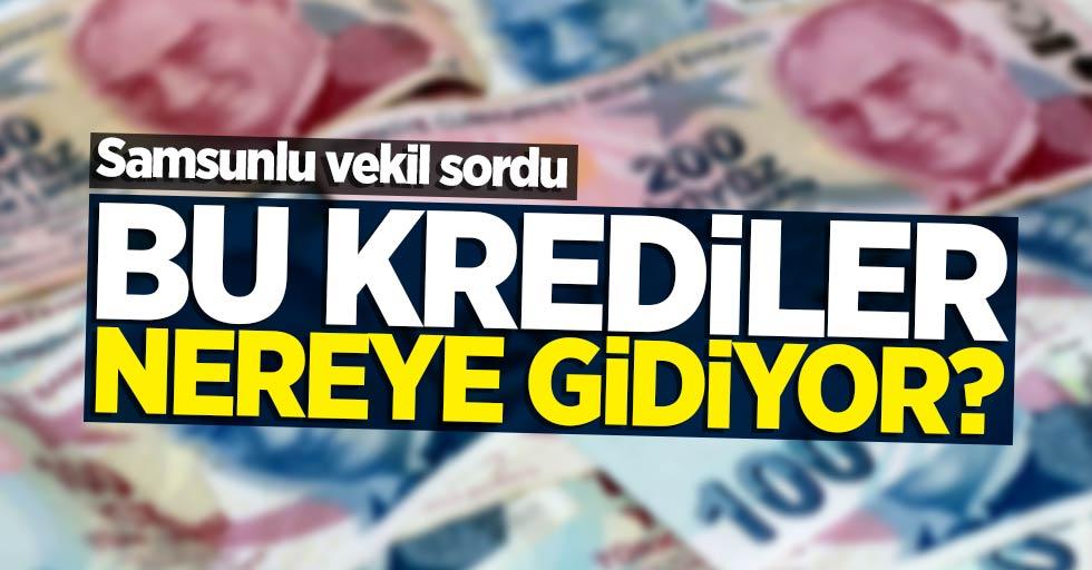 Samsunlu vekil sordu: Bu krediler nereye gidiyor?