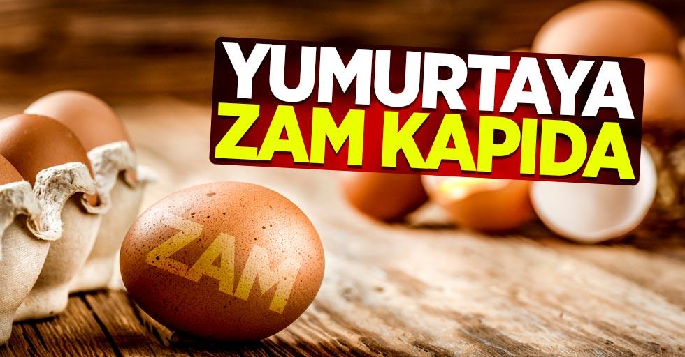 Yumurtaya zam kapıda