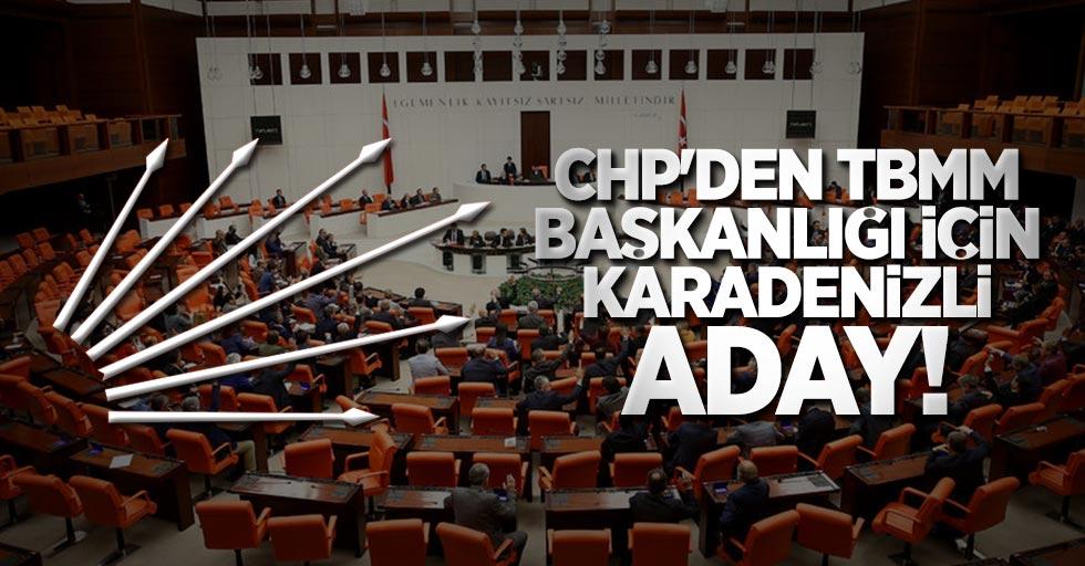 CHP'den TBMM Başkanlığı için Karadenizli aday