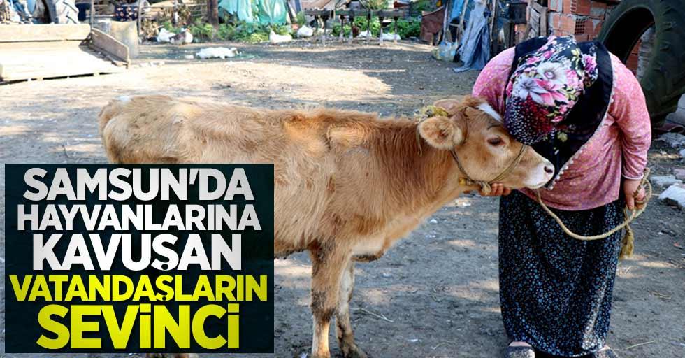 Samsun'da hayvanlarına kavuşan vatandaşların mutluluğu