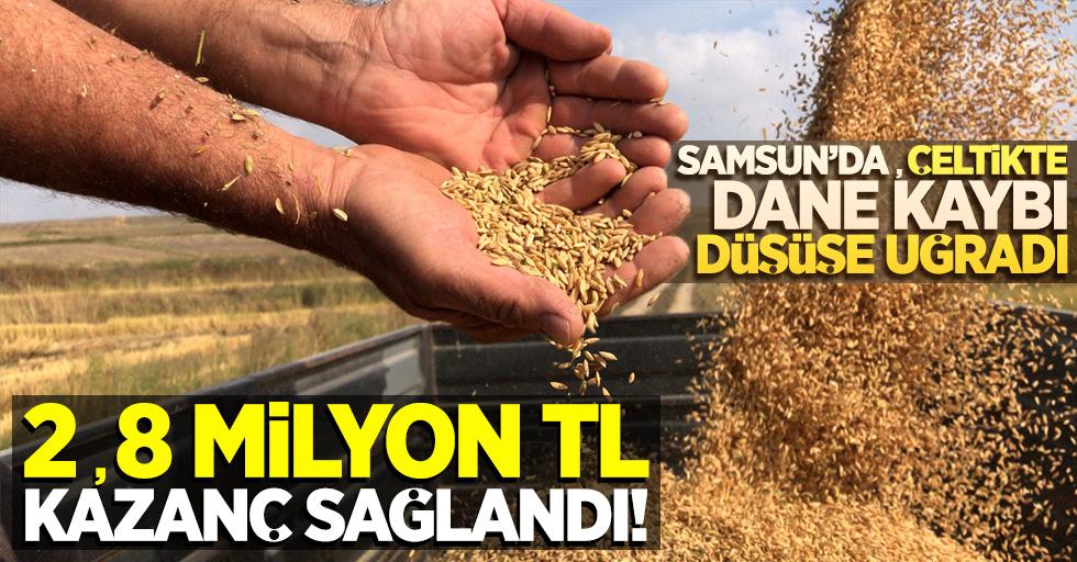 Samsun'da çeltikte dane kaybı düşüşe uğradı: 2,8 milyon TL kazanç sağlandı!