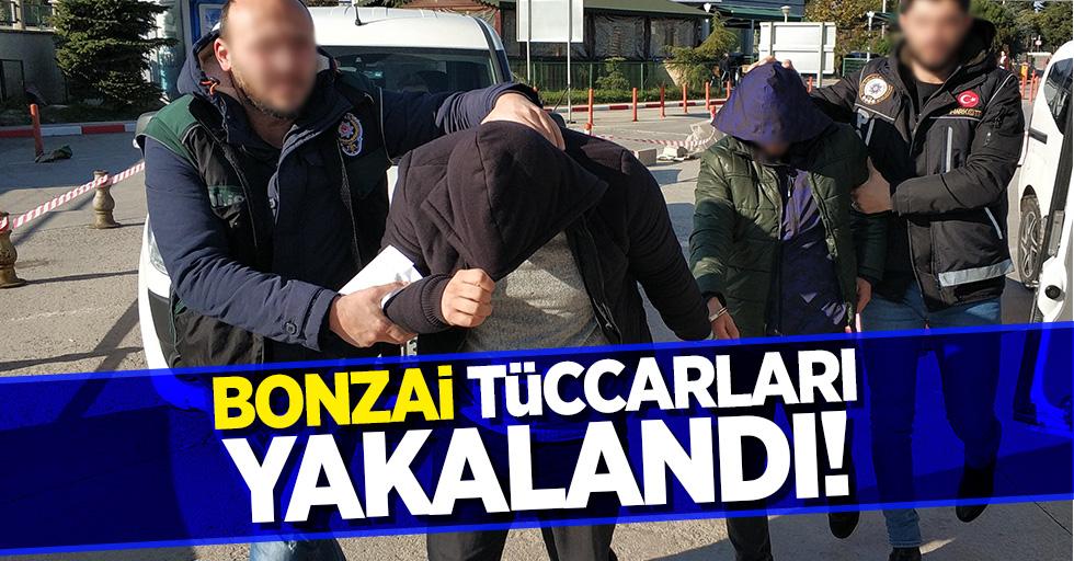 Bonzai tüccarları yakalandı!
