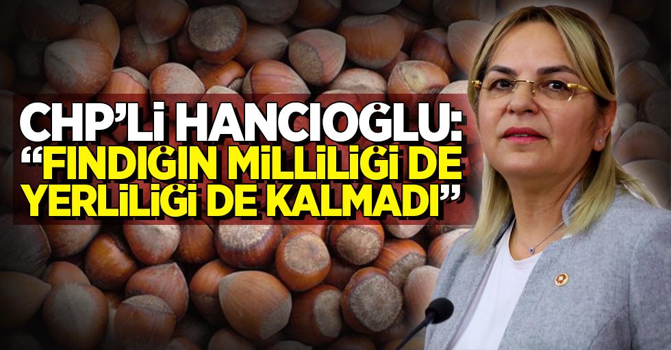 """CHP'li Hancıoğlu: """"Fındığın milliliği de yerliliği de kalmadı"""""""