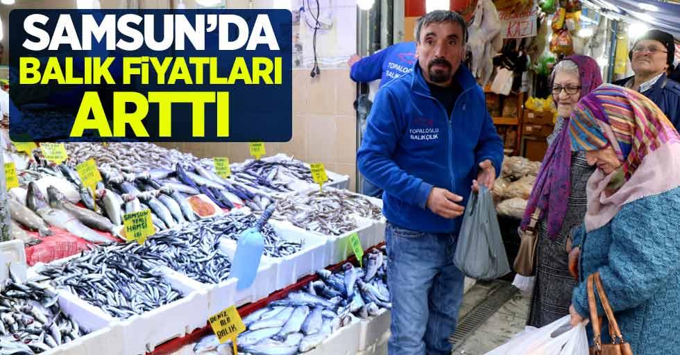 Samsun'da balık fiyatları arttı