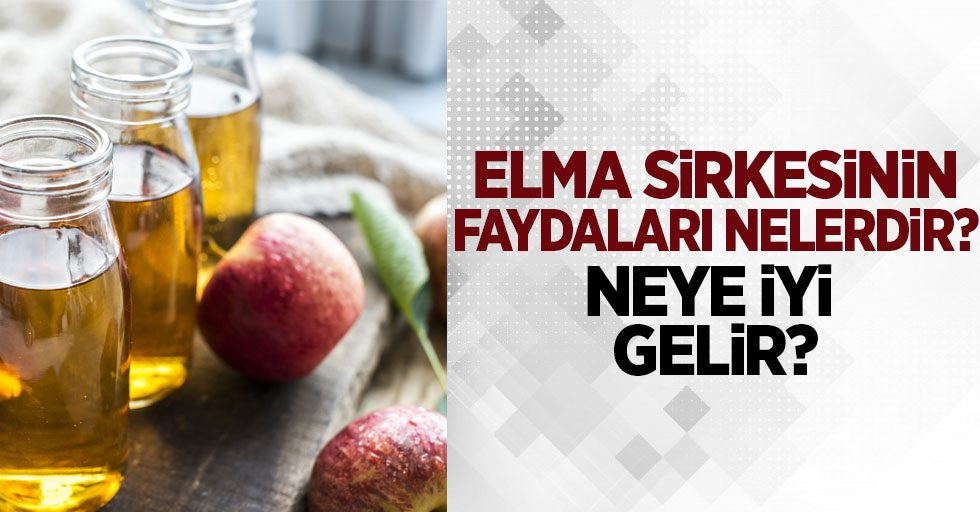 Elma Sirkesinin faydaları nelerdir? Antioksidan deposu olan elma sirkesinin faydaları...