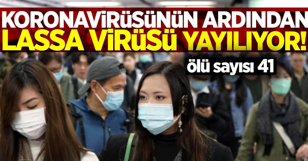 Korona virüsünün ardından lassa virüsü yayılıyor