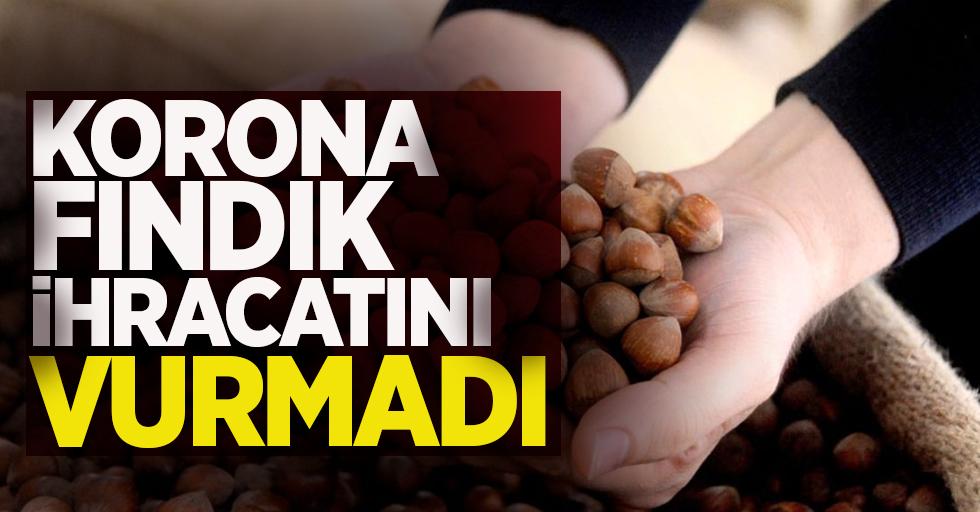 Korona fındık ihracatını vurmadı