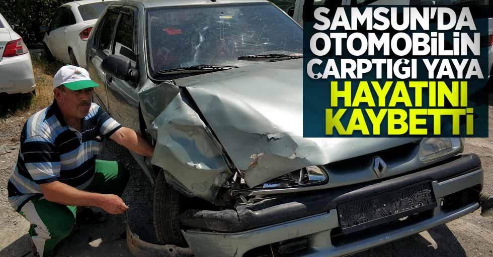 Samsun'da otomobil yayaya çarptı: 1 ölü