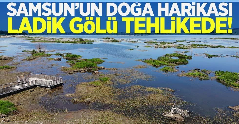 Samsun'un doğa harikası Ladik Gölü tehlikede
