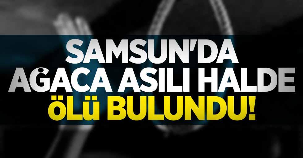 Samsun'da intihar! Ağaca asılı halde ölü bulundu