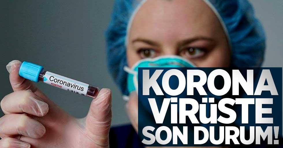16 Ocak Cumartesi güncel koronavirüs tablosu...