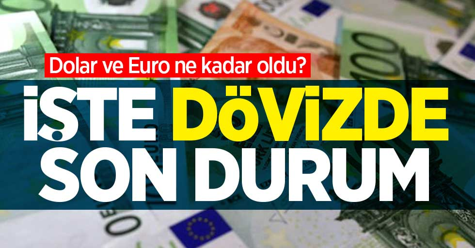 Dolar ve Euro ne kadar oldu? 25 Ocak Pazartesi dövizde son durum...
