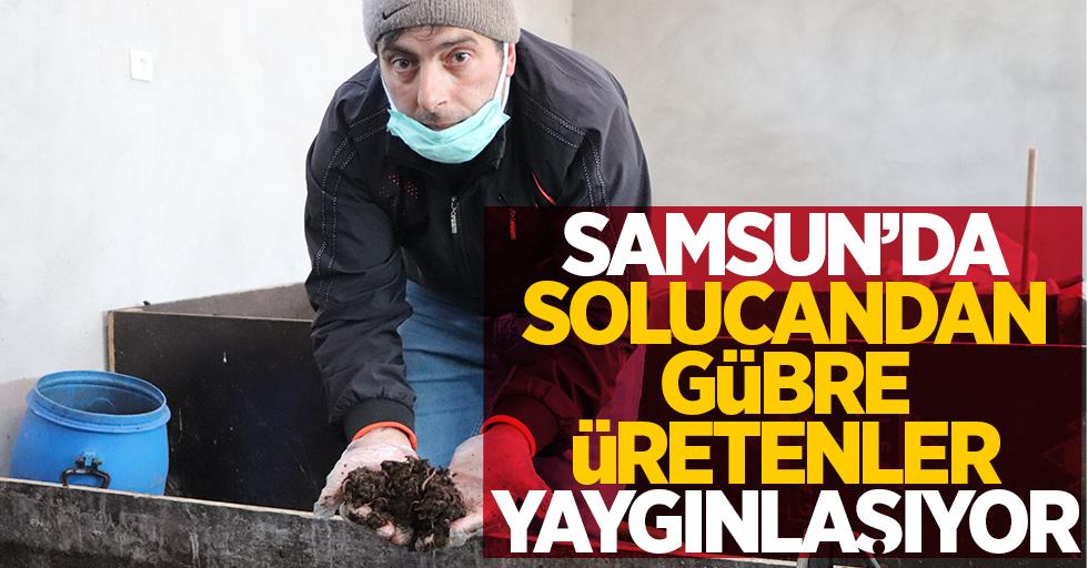 Samsun'da solucandan gübre üretenler yaygınlaşıyor