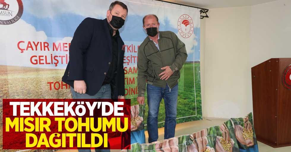 Tekkeköy'de mısır tohumu dağıtıldı