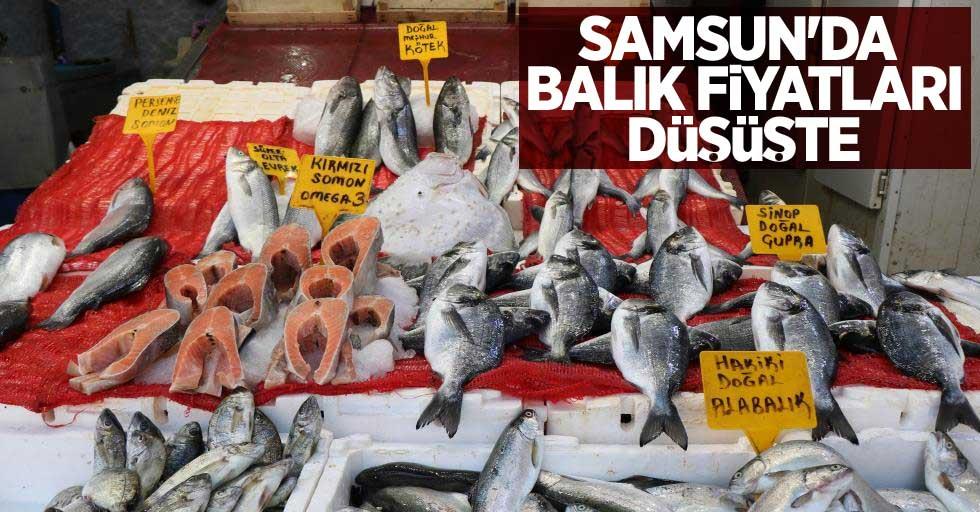 Samsun'da balık fiyatları düşüşte