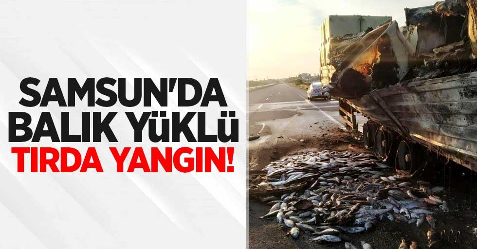 Samsun'da balık yüklü tırda yangın!