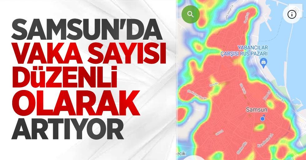 Samsun'da vaka sayısı düzenli olarak artıyor