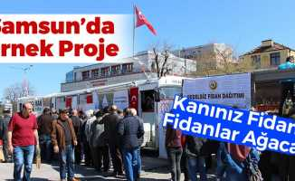 Samsun'da 2 Bin Fidan Dağıtıldı