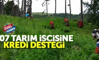 Samsun'da 107 tarım işçisine kredi desteği