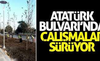 Atatürk Bulvarı'nda çalışmalar sürüyor